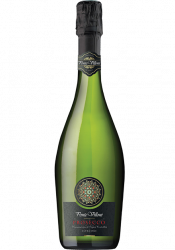 Вино ІТАЛІЯ ігристе Ponte Villoni Prosecco Spumante Extra Dry біле екстра сухе (0,75)